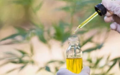 Wondering how to take CBD oil?